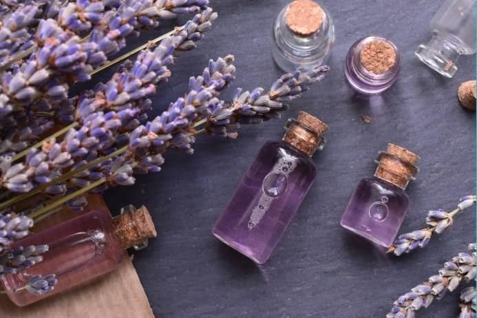 Lavender-Blog---Cover-Image